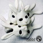 01_Rabbit_cd+dvd【MAIN】_軽