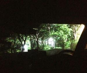 コラムを書く森の中の車の中(笑)