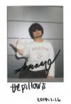 195_C_pillows