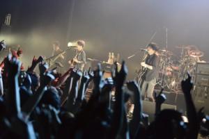 PHOTO_NCIS20401