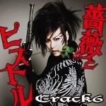 CD_Crack6_tsujo
